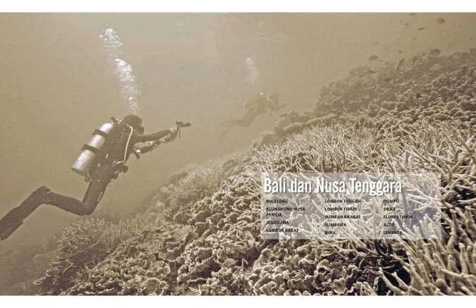 Profil Kawasan Konservasi Perairan, Pesisir dan Pulau-pulau Kecil - BALI-NUSA TENGGARA (2015)
